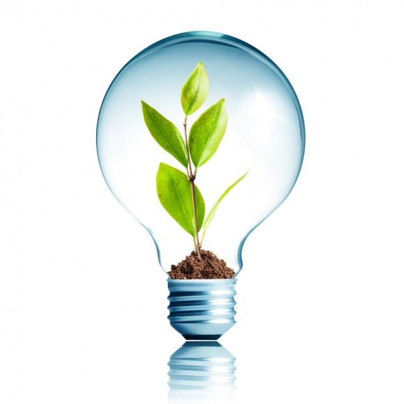 Light Bulb 13W