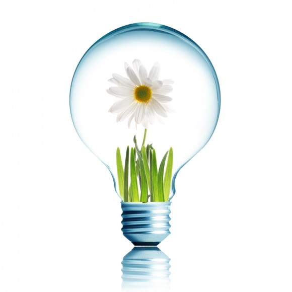 Light Bulb 14W