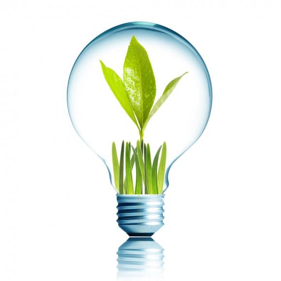 Light Bulb 1W