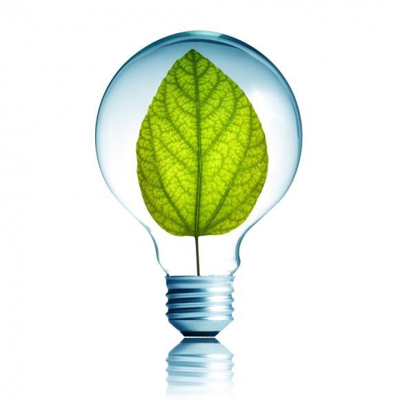 Light Bulb 5W